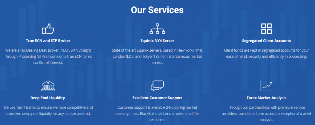 BlackBull Markets Review: Services Overview