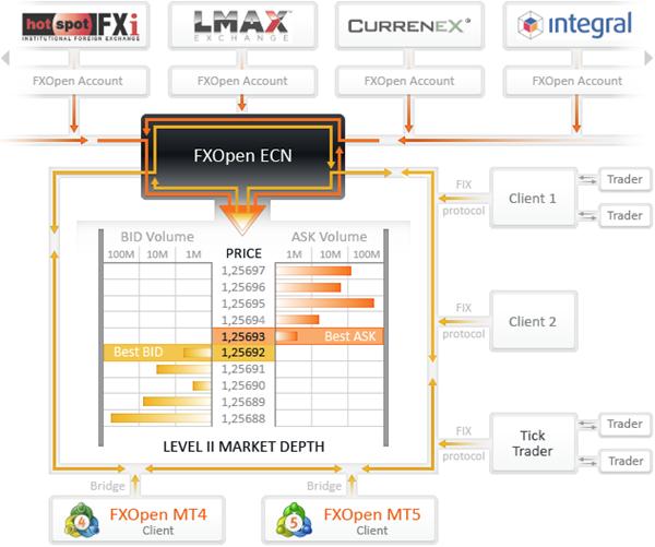 FXOpen Review: ECN Model Overview