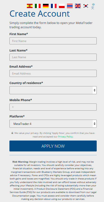 Blueberry Markets Review: Account Application Form