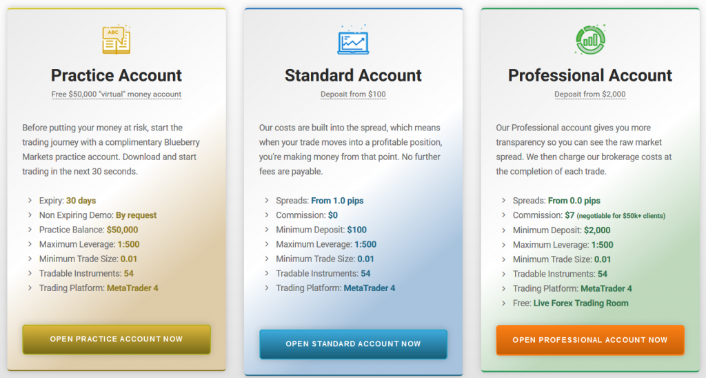 Blueberry Markets Review: Account Types