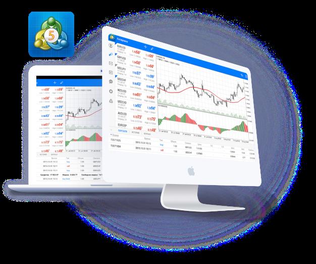 NSBroker Review: MetaTrader 5 Trading Platform